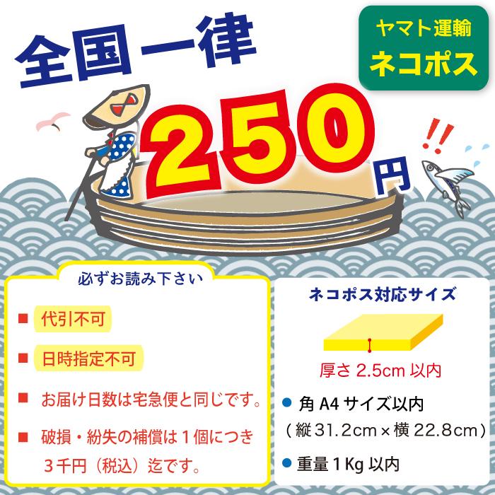 クロネコDM便全国一律173円