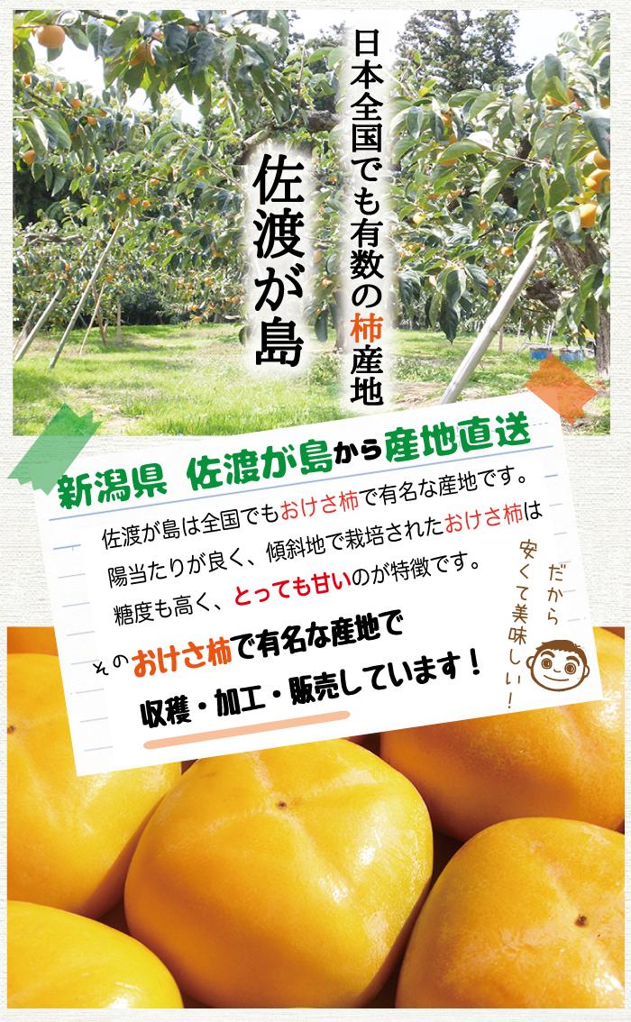 日本全国でも有数の柿産地