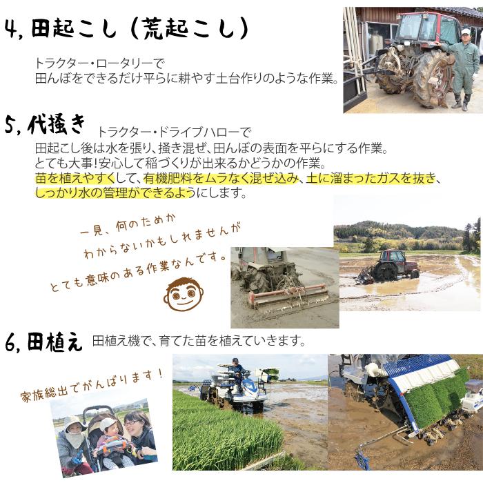 米作りの説明